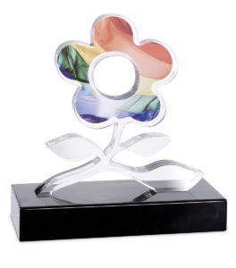 trofei-e-premiazione-11-min